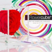 flowercube_pensieri_colorati_01